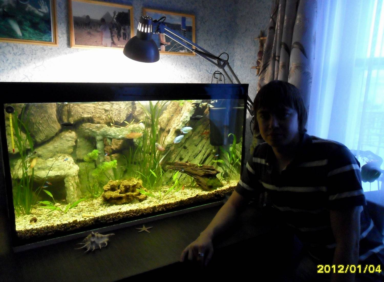 Задняя стенка аквариума своими руками